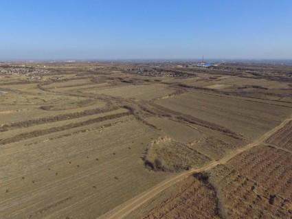 QM河南安阳滑县90亩半沙地出租