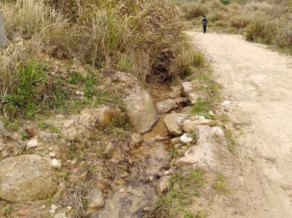 黄冈黄梅县15亩能种蘑菇荒地出租