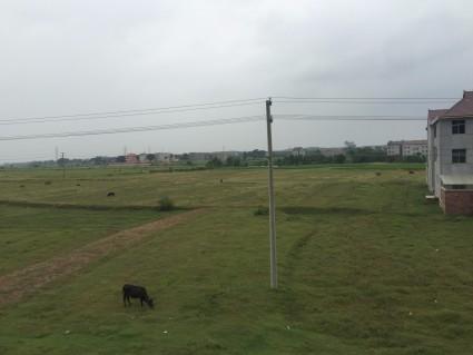 吉安吉安县 200亩 荒地 出租(JA5)