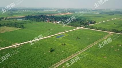 河南南阳邓州400000亩连片优质水浇耕地出租