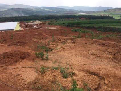 马龙区 75亩畜牧养殖用地 转让