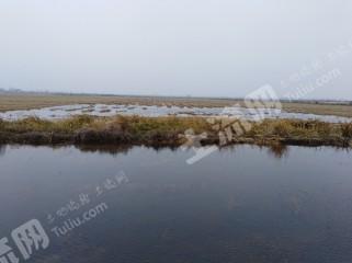 黄冈黄梅县150亩已挖好的稻虾套养水田出租