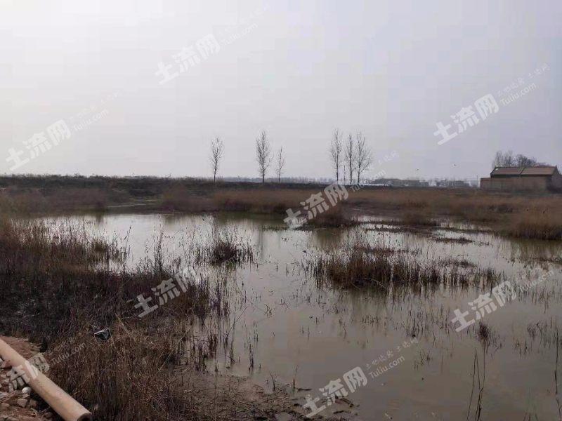 渭南臨渭區30畝坑塘出租