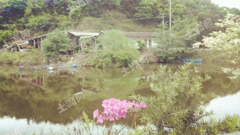 莆田仙游縣70畝湖泊轉包