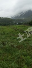 肇庆怀集县500亩有林地转让