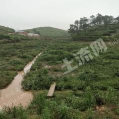 肇庆怀集县有1000多亩山地水田出租
