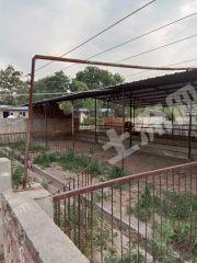 渭南富平县5亩农场出租