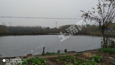 荆门掇刀区40亩鱼塘出租