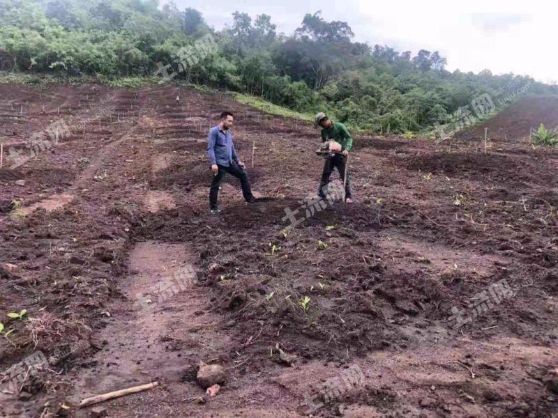 东南亚柬埔寨1500亩出售(6)
