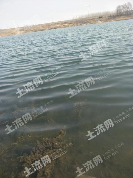 煙臺萊州市180畝水庫出租