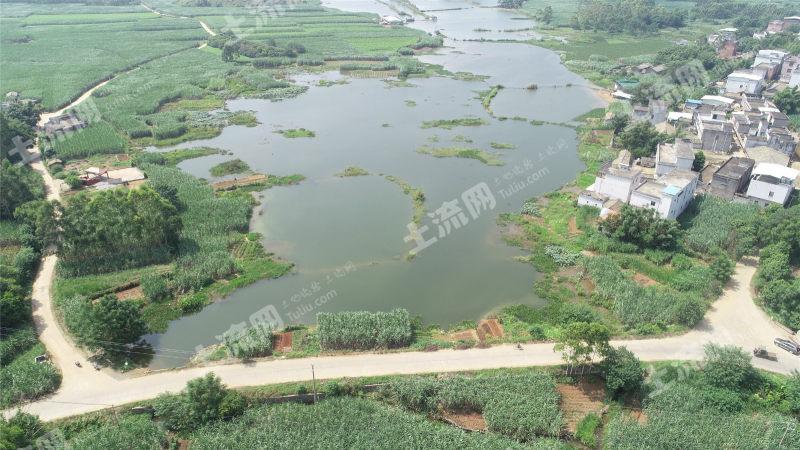 貴港覃塘區五里鎮530畝水產養殖用地出租