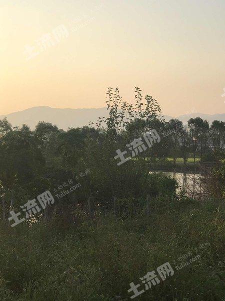 廣東/惠州/惠東縣8畝坑塘出租