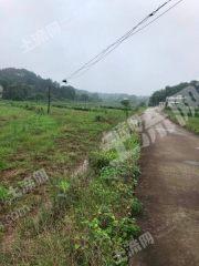 江西吉安900畝旱地出租(XT36001)