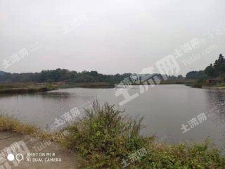 吉安市800畝旱地出租(XT23014)