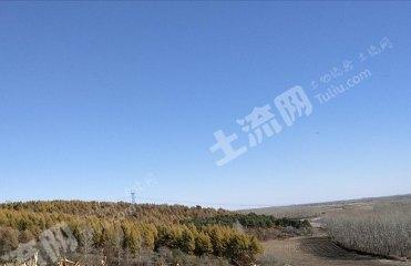 綏化北林區50畝荒山轉讓