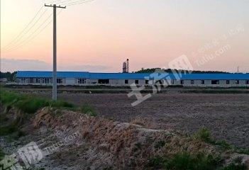 松原前郭爾羅斯蒙古族自治縣50000畝綜合養殖用地轉讓