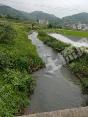 郴州桂陽縣200畝水田出租