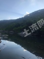 廣東/惠州/惠東縣20畝河邊露營項目合作