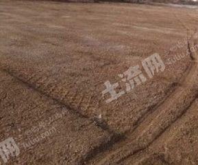 衡水景縣21.5畝工業用地轉讓