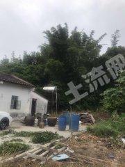 惠州惠東縣大嶺100平米農房帶2畝果園轉讓
