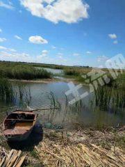 松原前郭爾羅斯蒙古族自治縣 840畝 畜牧養殖用地 轉讓