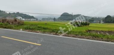 重慶涪陵區150畝水田出租