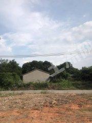 广东/惠州/惠东县城周边100平米农房带1亩地出租
